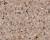 silestone-Stone-beige-daphne